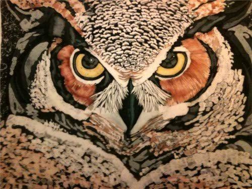 Joanne Polubiec Great Horned Owl